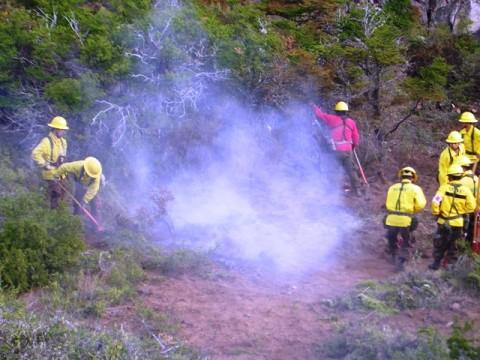 Incendio forestal (Archivo EPD Noticias)