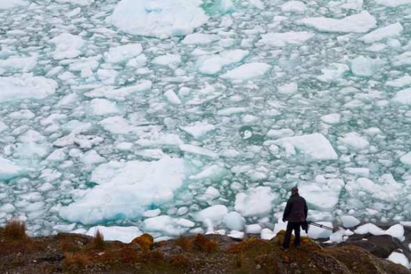 Glaciar Montt