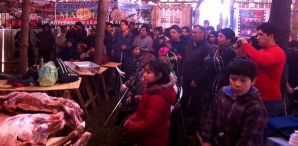 Más de 400 personas celebraron We Xipantu en Coyhaique.