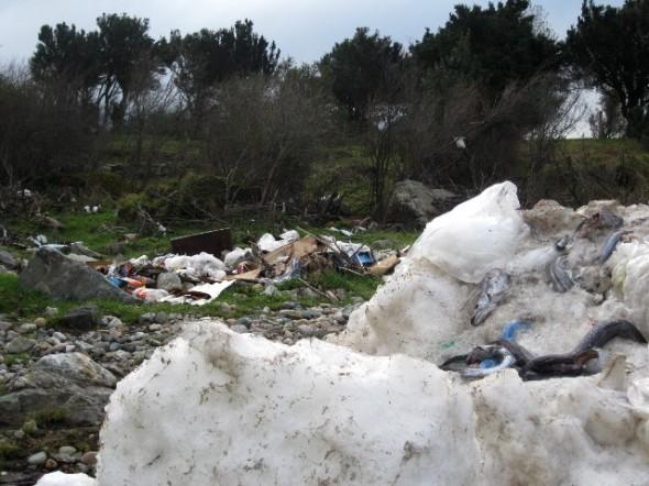 Candidato a consejero regional denuncia que empresas estarían vertiendo desechos a la orilla del Río Aysén