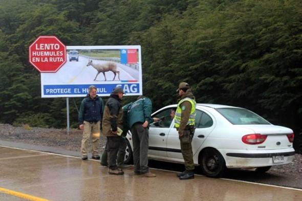 SAG reforzó actividades para la protección del Huemul con la instalación de letreros camineros