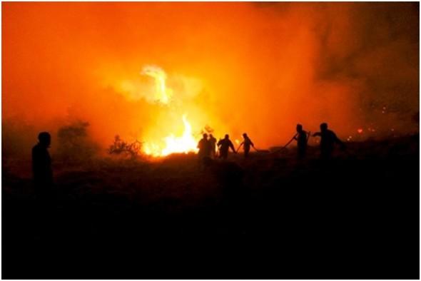 Incendio Conservacion Patagonica