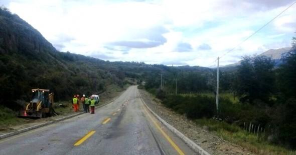 Animales muertos camion camino Ibañez Galeria