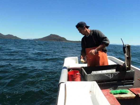 Foto Fondo de Fomento Pesca Artesanal Galeria