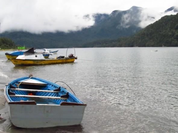 Bote, pesca, naturaleza