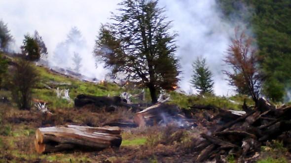 Incendio Coyhaique Conaf 2