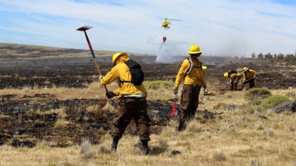 incendio forestal conaf