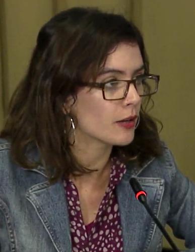 Diputada Camila Vallejo