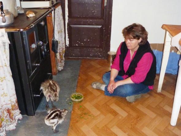 Bernardita, Ojitos y Coté en Cocina - Cristián Saucedo