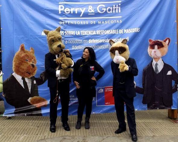 Perry y Gatti, defensores de mascotas