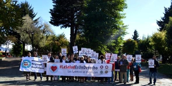 Colegios profesionales de la Salud marchan en Coyhaique