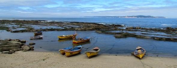 Caletas pesqueras Octava Región.