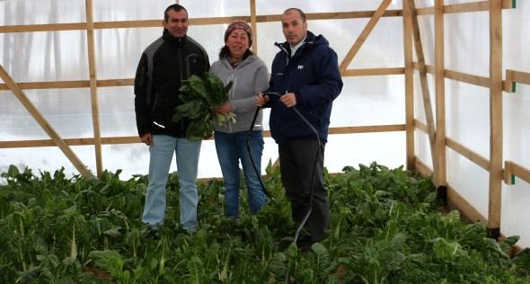 Agricultura ejecuta innovador proyecto que permite instalar sistema de cosechas de aguas lluvias